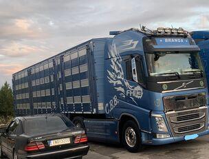 VOLVO TOP FH13 540-EURO 6 -4 level Jumbo PLAVAC   livestock truck